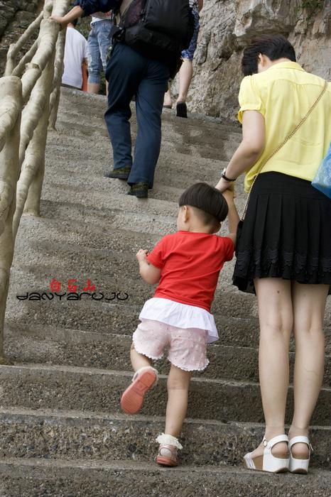 【白石山验客】绝壁栈道空中卧,花开山石亦有情