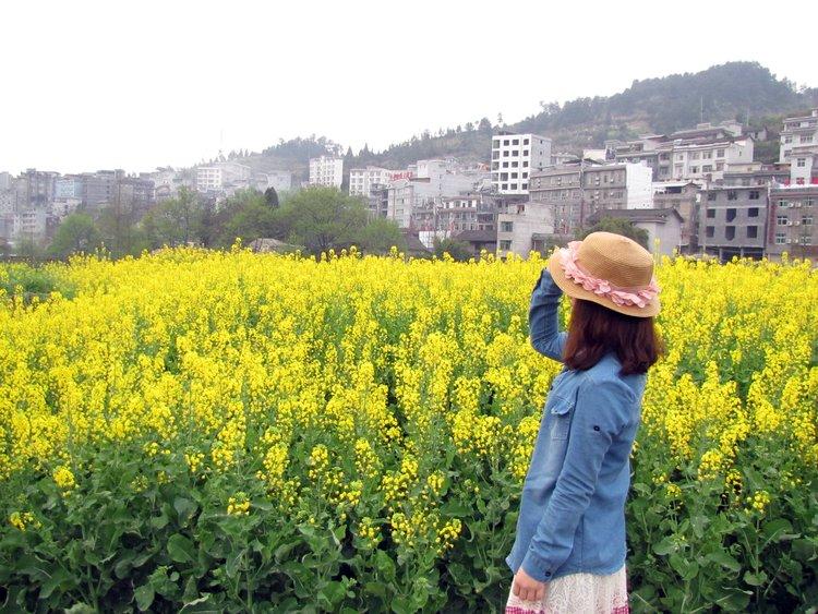 广州出发长沙、张家界、凤凰古城9天廉价游