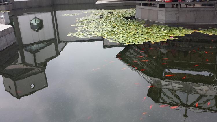 苏州南京六日游