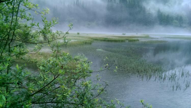 最美景色之----九寨沟、黄龙、若尔盖大草原之旅(超多相片哦)
