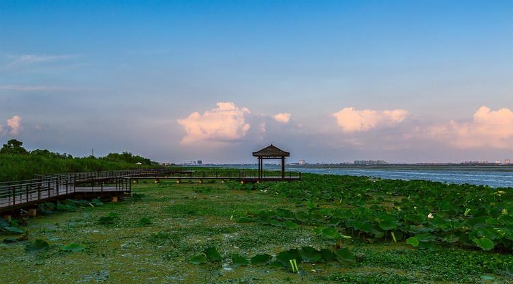 目前,莲花岛出产的大闸蟹,也是苏州市出口大闸蟹的免检区域.