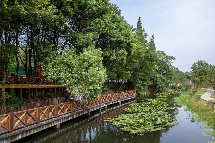 游:知青小屋,公社大食堂,乡村动物园 6.