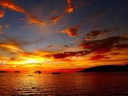 不经意间发现这里*原生态迪加岛+梦幻美人鱼岛6天之旅图片