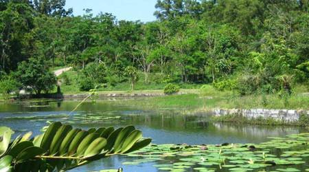 三亚亚龙湾三亚-兴隆热带植物园3