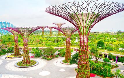 3新加坡日间动物园 4新加坡滨海湾花园