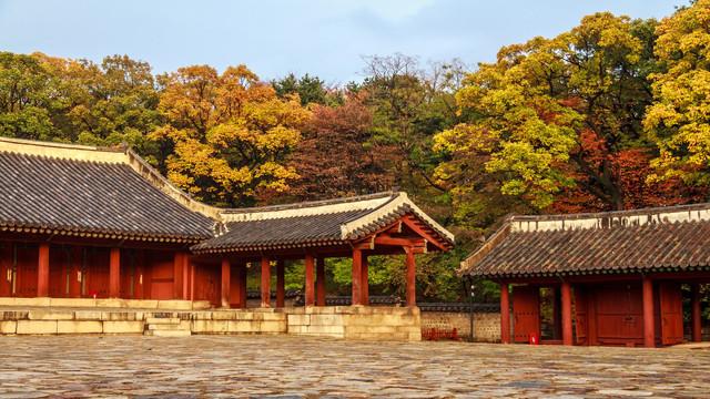 韩国釜山+济州5日_北京到务安郡跟团旅游攻略