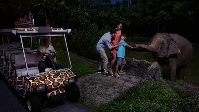 新加坡夜间动物园【乌鲁乌鲁野生餐厅】自助晚餐
