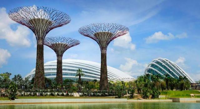 滨海湾花园-新加坡鱼尾狮公园 小印度 滨河湾经典一日包车服务