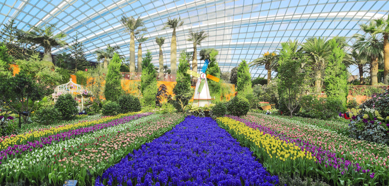 新加坡滨海湾花园门票预定,新加坡滨海湾花园价格,新加坡滨海湾图片