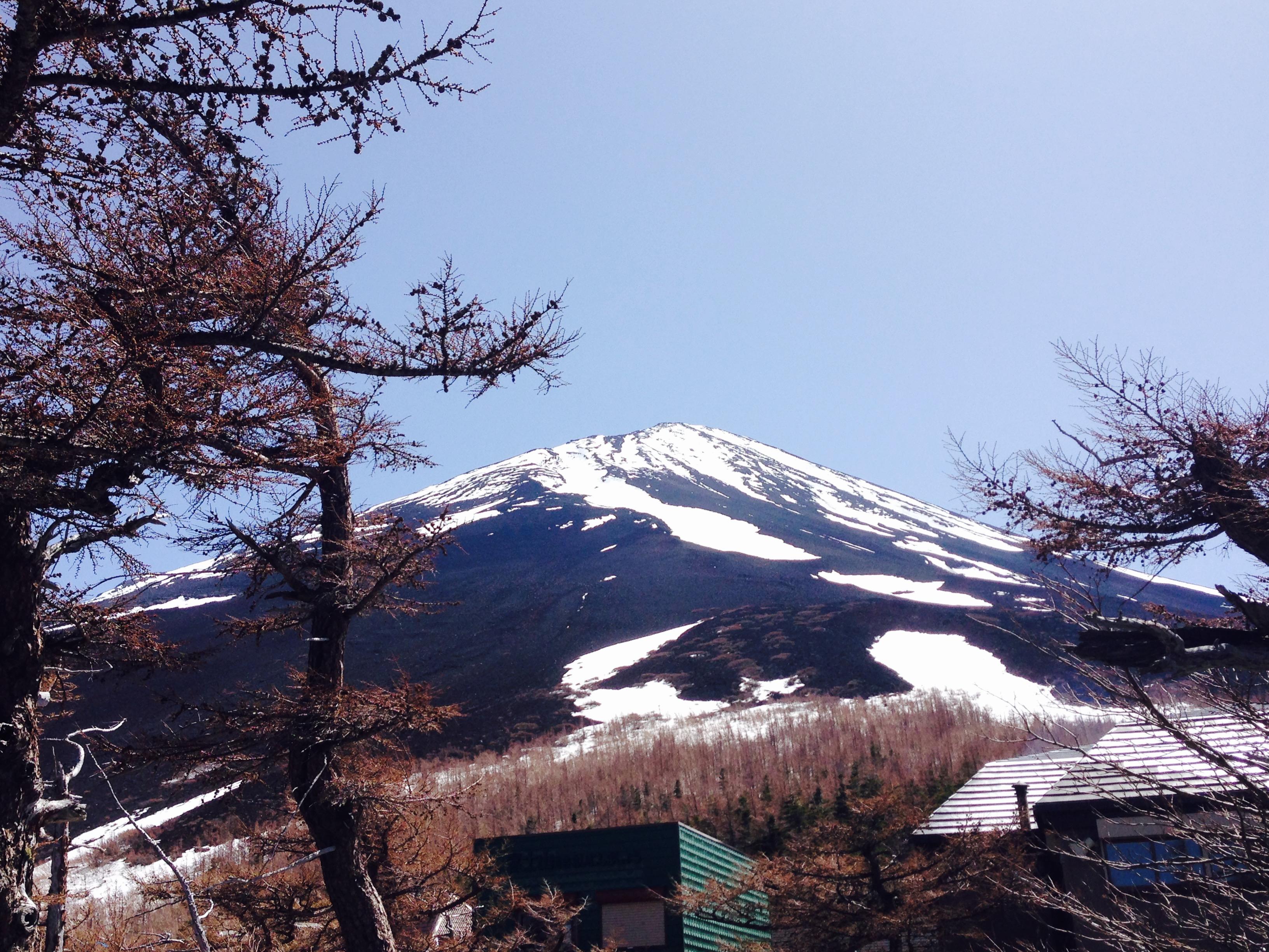 【5赞】本州 北海道乐活7日游