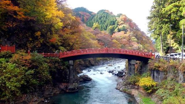 日本关西古都新韵深度7日半自助游_武汉到大阪跟团