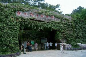 合肥野生動物園