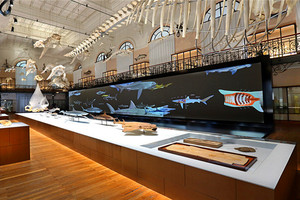 芽莊國家海洋博物館