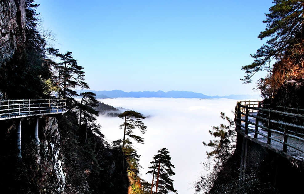 江西井冈山杜鹃山索道(笔架山)