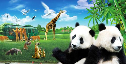 消费提醒:去 深圳野生动物园 的N大理由 理由1 深圳野生动物园是中国第一家放养式的野生动物园。 理由2 园内奇异多姿的飞禽走兽,幽雅恬静的自然环境,布局独特的园林设计,在国内都是首创的。 理由3 目前,深圳野生动物园是世界上惟一拥有狮虎兽、虎狮兽的野生动物园。 理由4 深圳野生动物园在园内投资兴建的海洋天地是集大型海洋动物表演、海洋生物展览、科普教育、休闲娱乐以及自闭症儿童康复基地等多功能为一体的现代化海洋主题公园。 同程网友这样评价深圳野生动物园 非常不错的。适合一家人出游。带小孩子认识不同的动物