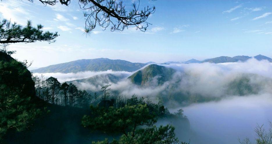 福安千岛湖蒸汽鱼