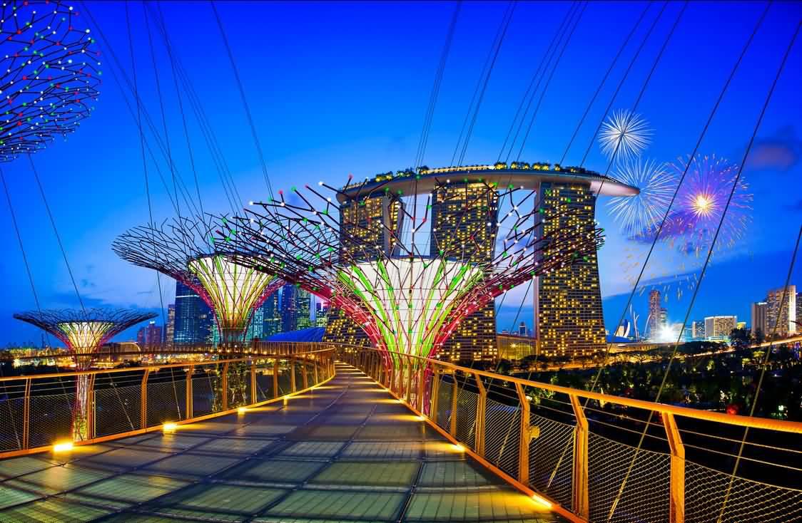 【假期特惠】新加坡滨海湾花园空中走廊