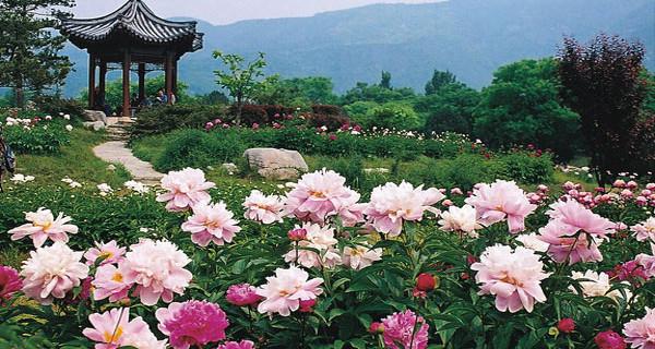 去卧佛寺祈福 基本信息 简介: 北京植物园,位于北京市区的西北部,香山