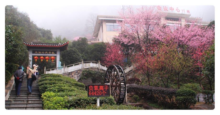 【王仙岭旅游风景区】门票_王仙岭旅游风景区门票价格