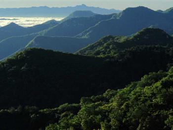 游玩景点建平天秀山森林公园 建库容7万立方米塘坝——秀图片