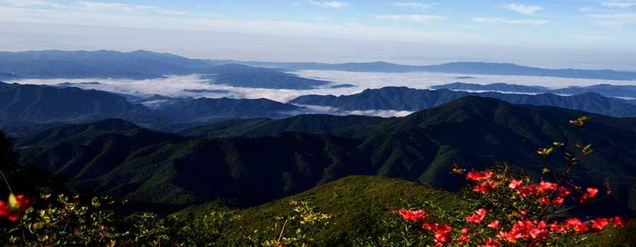 大围山国家森林公园图片