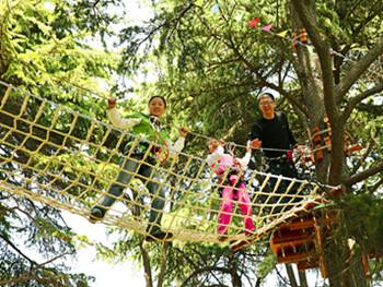 兒童主題樂園戶外森林