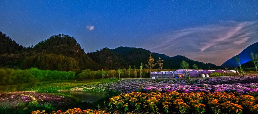 重庆涪陵大木花谷 大木花谷 大木林下花园 同程旅游门票预订