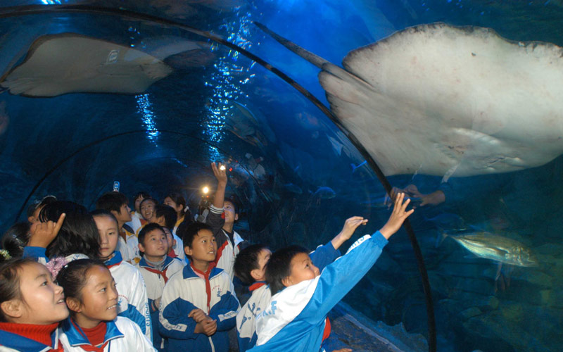 宁波海洋世界门票
