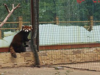 焦作市森林公园童星动物园