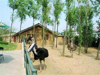 三峡森林野生动物园