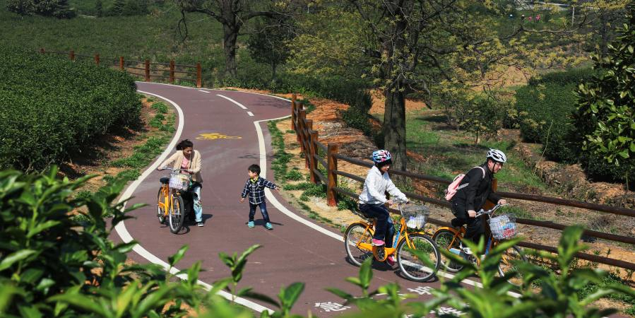 宜兴自行车慢行公园_宜兴龙池山慢行公园_宜兴_宜兴森林公园_中国宜兴_系统之家网