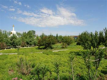 景区位于内蒙古通辽市开鲁县城西20公里的大榆树镇