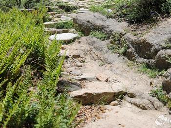 游玩景点西藏尼木吞巴景区    尼木景区位于拉萨市尼木县吞巴乡,距
