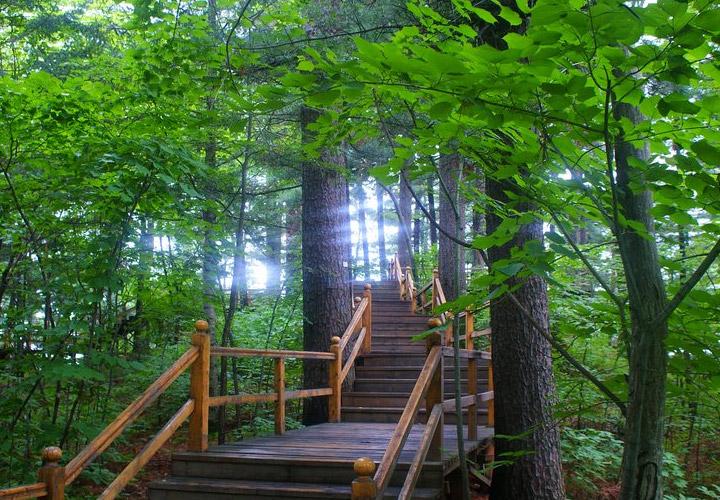五营国家森林公园门票 五营森林公园门票多少钱 伊春五营国家森林公