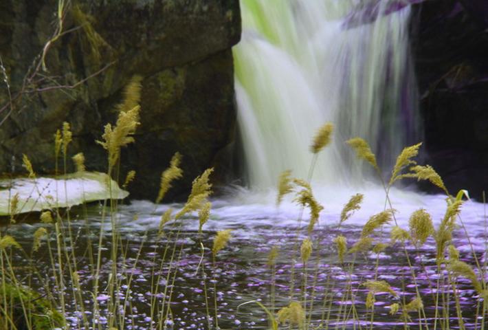 茅兰沟国家森林公园