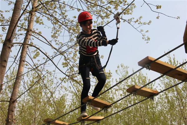 树袋熊树上探险乐园门票