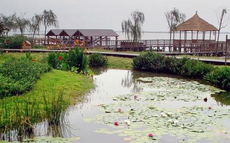 莲花岛景区