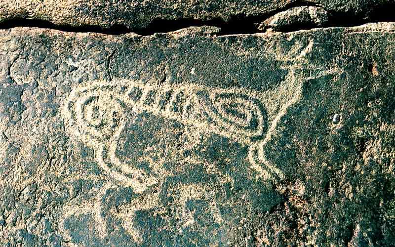 祭祀,征战,娱舞,交媾等生活场景,以及虎,豹,鹿,羊,牛,马等多种动物