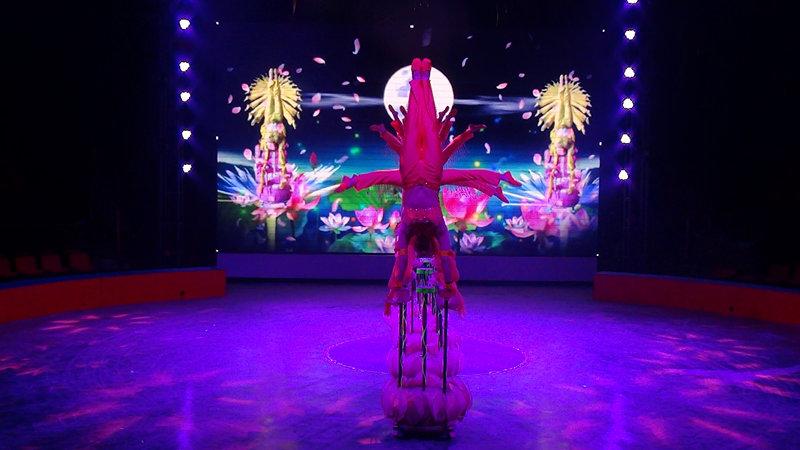 表演设有复合升降舞台,镜框式舞台和吊杆,构成了一座设施完整,功能图片