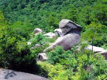国家森林公园龙凤谷景区