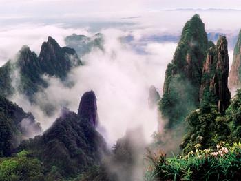 莽山国家森林公园门票图片