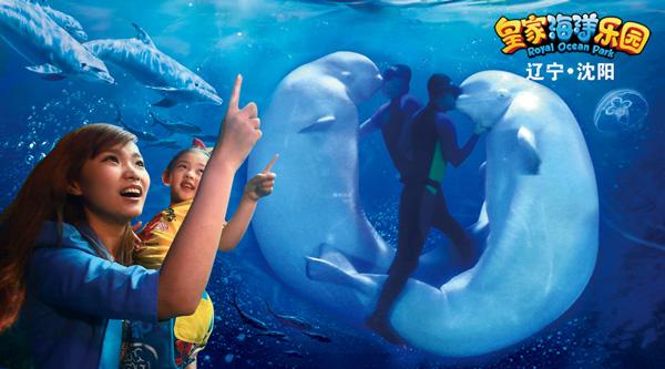 到皇家海洋乐园,和可爱动物约会!