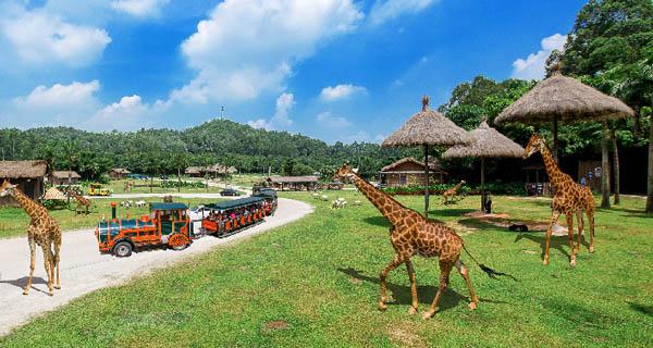 【动手动脚】广州长隆野生动物园跟团1日游 惠州出发>