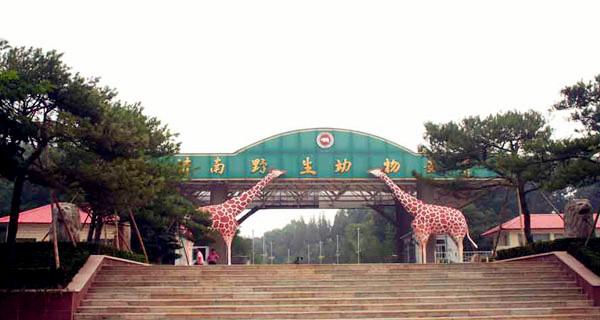 动物园 章丘野生动物园1日游>生态景观