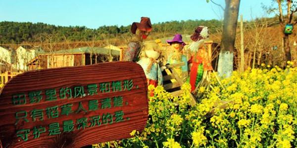 垂钓中心,陶艺坊,小型动物园,家禽小动物喂养体验区等特色亲子活动.