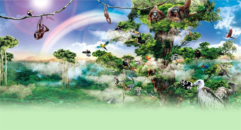 长隆野生qq怎么弄指定红包世界—雨林仙踪