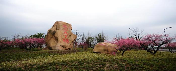 超山风景区特别活动,爸爸带你去看萌宠,2000只熊猫在等着你们哦!