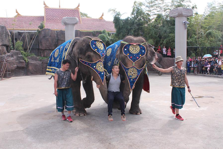 生态环境好,物种丰富的野生动物园,集动物园 马戏团 儿童游乐场于一体