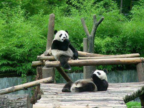 重庆周边游_重庆周边游攻略_重庆旅游景点大全_同程