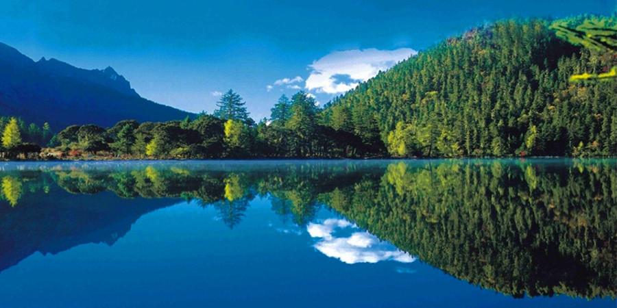 千岛湖丽景酒店 千岛湖中心湖区/杭州千岛湖森林氧吧